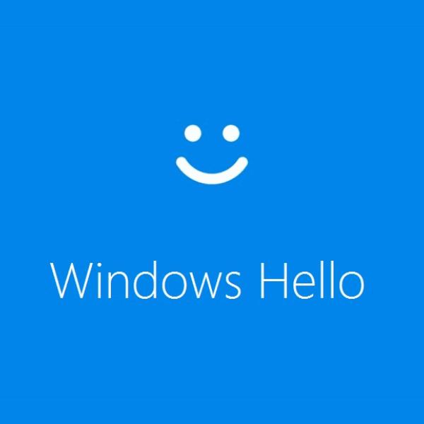 Windows Hello (Gesichtserkennung) in Domänen ausgegraut